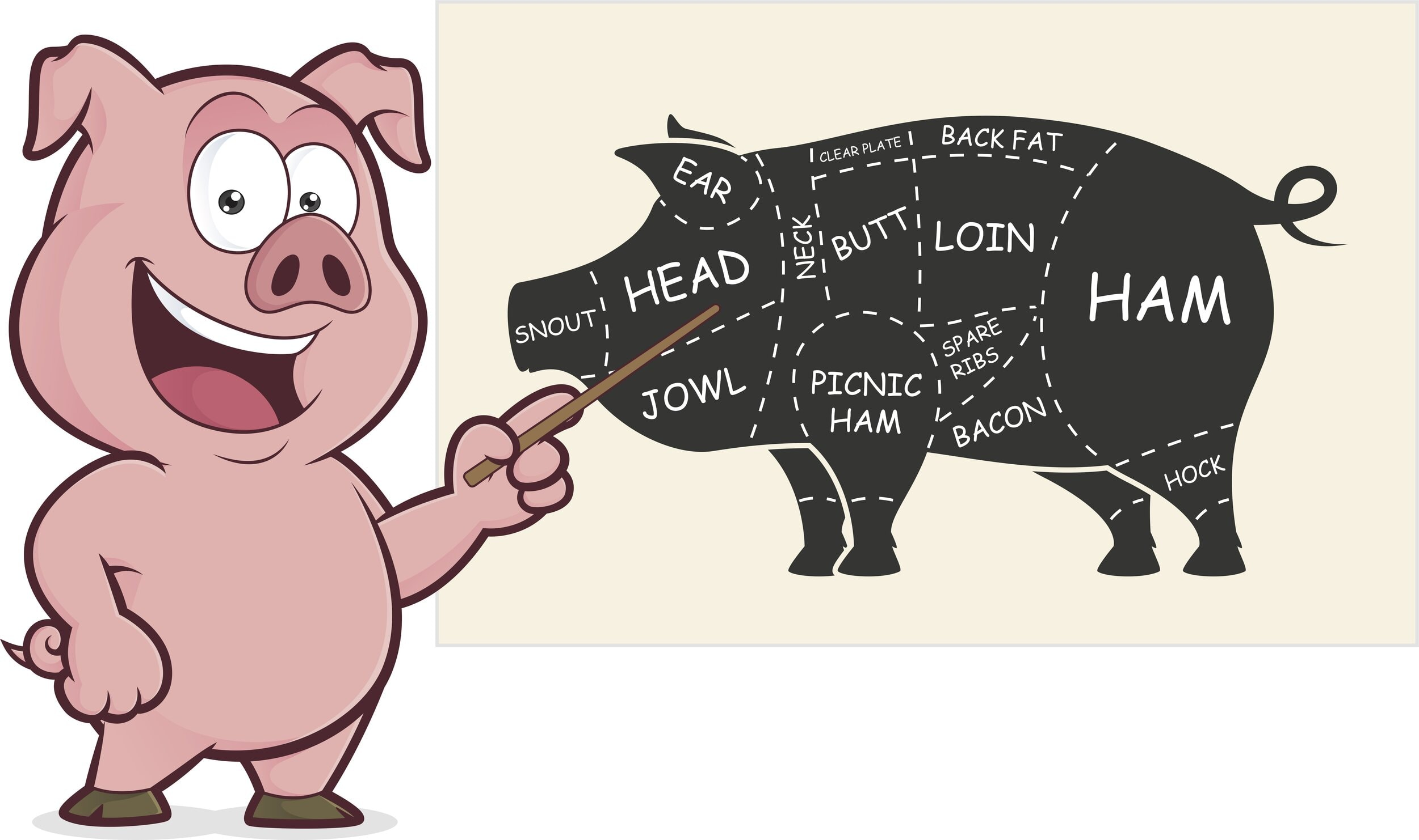 Hog Pig Meat Diagram